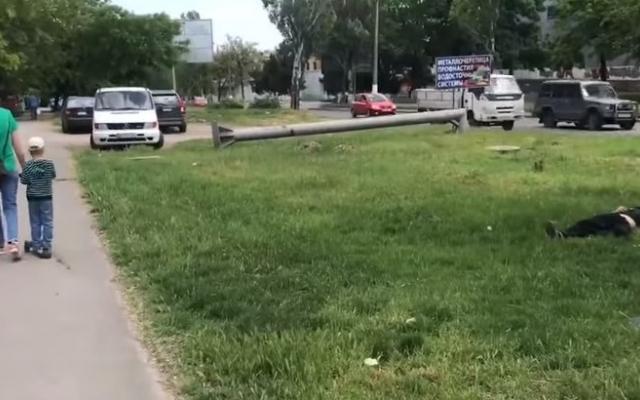 В Одессе посреди газона спят наркоманы (ВИДЕО) Фото № 0