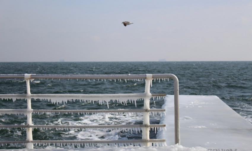 Возле одесского дельфинария: набережная покрылась льдом