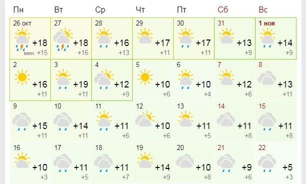То оттепель, то ледяной дождь: синоптики пророчат Одессе скользкую зиму