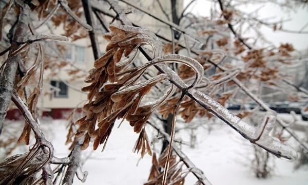 Непогода обесточила более 200 населенных пунктов по стране. Одессе обещают ледяной дождь