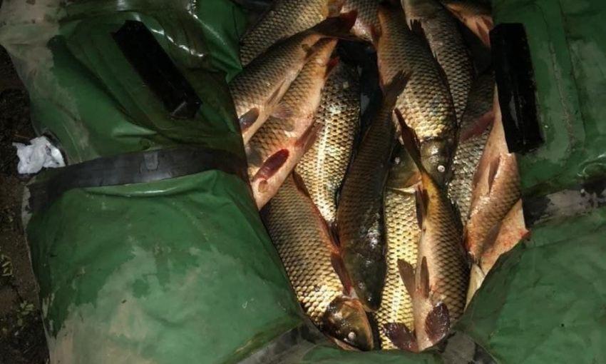 На Днестре задержали рыбака-нелегала с уловом