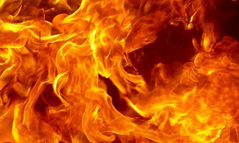 Под Одессой горел Куяльницкий лиман